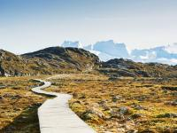 Hiking Trail in Ilulissat